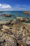 Stenen op tropisch strand Royalty-vrije Stock Afbeelding