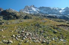 Stenen op weide en pieken nabijgelegen Grindelwald in Zwitserland Stock Foto's