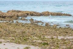 Stenen op zand overzeese zandtextuur van steen achtergrondclose-uppari royalty-vrije stock afbeeldingen