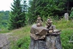 Stenen står högt i den svarta skogen Royaltyfria Foton
