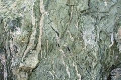 Stenen strukturerar havet Royaltyfria Foton