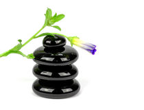 Stenenpiramide met bloem Stock Foto's