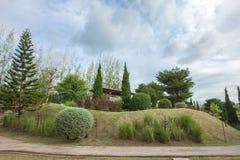 Stengångbana med grästrädgården Arkivfoto