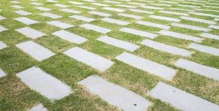 Stengångbanamodell på ett gräsfält i garder Royaltyfri Bild