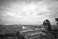 StenGargoyles av Notre Dame royaltyfria foton