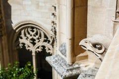 Stenhuvud av en örn Arkivfoto