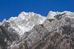 stenig banff bergnationalpark Royaltyfria Bilder