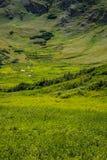 Stenig bergnationalpark Colorado Arkivfoto