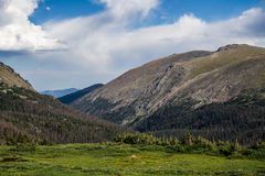 Stenig bergnationalpark Colorado Arkivbilder