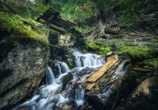 Stenig brunn i färgrik grön skog med den lilla vattenfallet royaltyfri bild