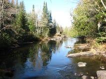 Stenig flod Fotografering för Bildbyråer