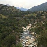 Stenig flod Arkivbilder