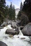 Stenig flod med stora stenblock som omges av gröna träd royaltyfri foto