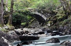Stenig flodbro Fotografering för Bildbyråer