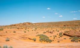 Stenig gul öken av Arizona erosion av sandsten Sydvästlig Förenta staterna royaltyfri fotografi