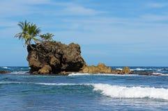 Stenig holme med kokospalmer arkivfoton