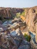 Stenig kanjon med gröna buskar och träd i det Palmwag medgivandet, Namibia, sydliga Afrika Royaltyfri Fotografi