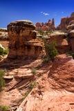 stenig kanjoncanyonlandsnationalpark Fotografering för Bildbyråer