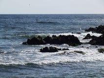 Stenig kust 3 Royaltyfri Bild