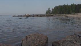 Stenig kust av golfen av den Finland sommardagen arkivfilmer