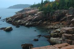 stenig kust för acadia Arkivbilder