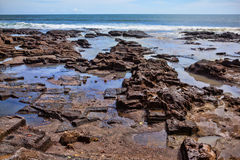 stenig kust för hav Royaltyfria Bilder
