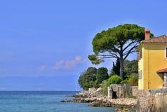 Stenig kust för hav med trädet och byggnader under deppighethimmel Royaltyfri Fotografi