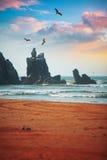 Stenig kust längs havet peru Royaltyfria Foton