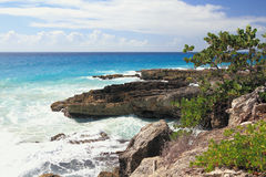 Stenig kust och hav guadeloupe Royaltyfria Bilder