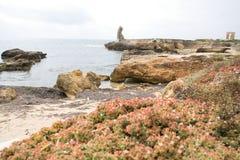 Stenig kust och hav nära staden av Mahdia, Tunisien royaltyfria bilder