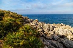 Stenig kust på den Riserva Naturale dellozingaroen i Sicilien Arkivfoto