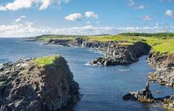 Stenig kustlinje i den Elliston byn längs kustfingrarna av ön av Newfoundland, Kanada Arkivbilder