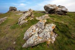 Stenig kustlinje och äng Royaltyfri Fotografi