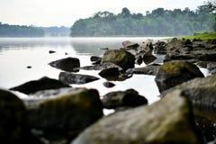 Stenig rainforest för lugna vatten royaltyfri foto