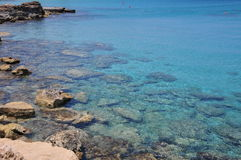 Stenig sealine med ett crystal blått vatten Royaltyfria Bilder