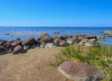 stenig seashore Arkivbilder