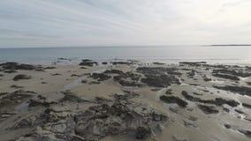 stenig seashore stock video