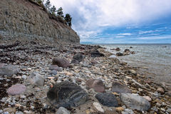 stenig seashore Royaltyfria Bilder