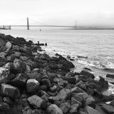 stenig shoreline Royaltyfria Foton