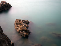Stenig shoreline med fiskmåsen och blindskärar, silkeslent vatten Arkivfoton