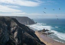 Stenig shoreline på den Castelejo stranden i Portugal med fåglar arkivfoton