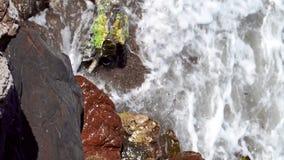 Stenig strand för skönhet med havsvågor arkivfilmer