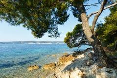 Stenig strand för sommar (Kroatien) Royaltyfri Fotografi