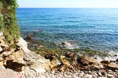 Stenig strand med klart havsvatten och vegetation royaltyfri bild