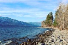 Stenig strand och träd längs sjön Royaltyfri Foto