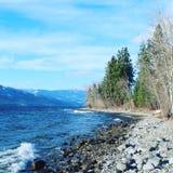 Stenig strand och träd längs sjön Arkivfoto