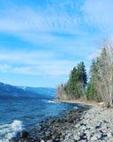 Stenig strand och träd längs sjön Royaltyfri Bild