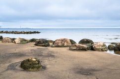 Stenig strand på golfen av Finland Sillamae Royaltyfri Fotografi