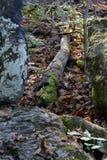 Stenig terrain Fotografering för Bildbyråer