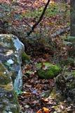 Stenig terrain Royaltyfri Bild